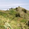 Lago Titicaca - 26