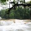 Cascadas dde Agua Azul - 8